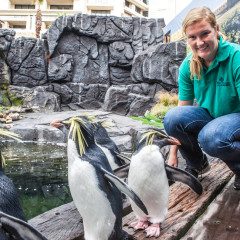 Hilary working as a conservation intern at the 2 Oceans Aquarium