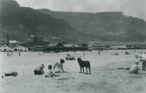 Woodstock beach once stretched along the front part of Woodstock, to the north of the Castle of Good Hope. It was the scene of many shipwrecks during the sailing era, when ships would be blown onto the sand by Cape Town's notorious gales.