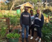 Sustainability Internships in South Africa