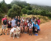 Gap Year Internships Cape Town