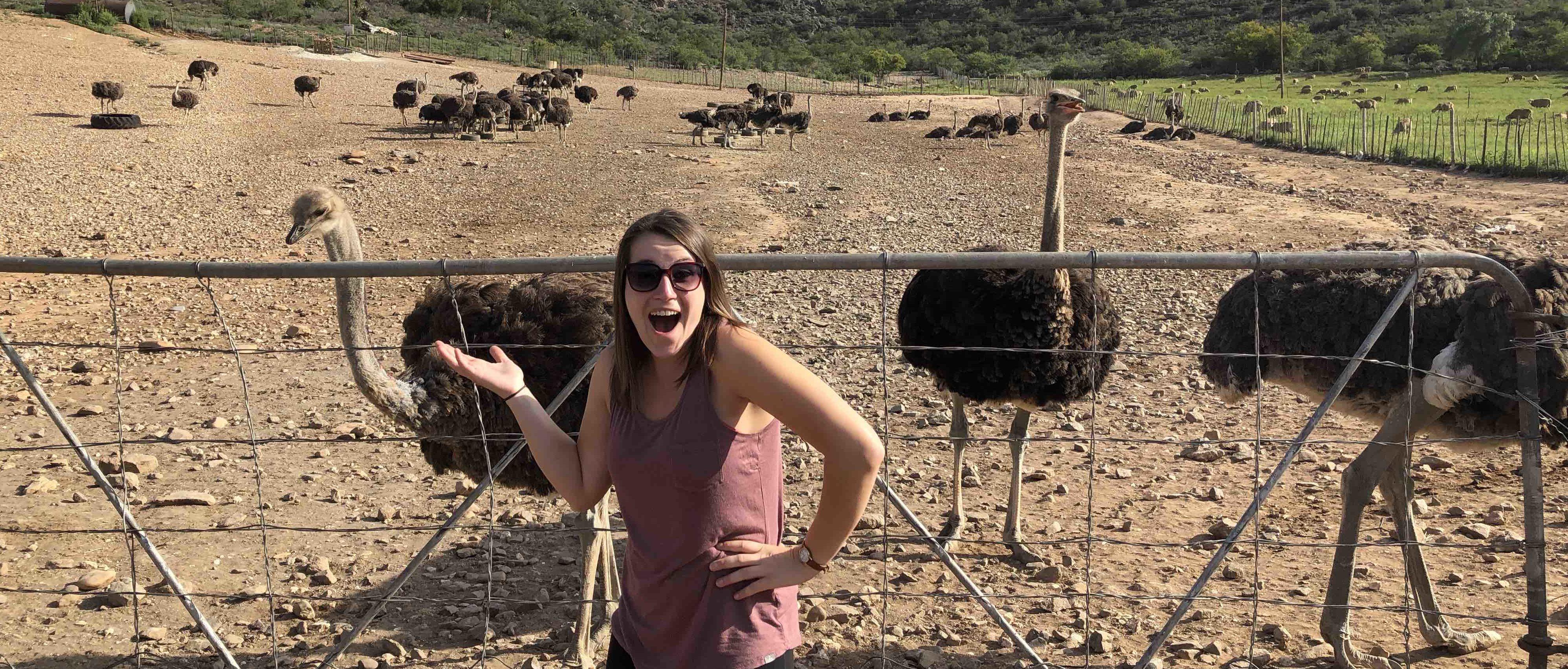 OT internship abroad - Mollie Wang